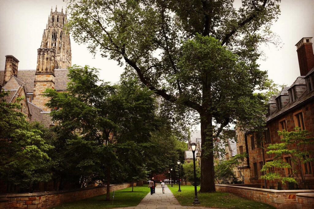 Dan Renzetti Yale University